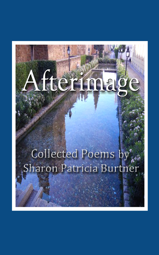 ebook link: click to order Afterimage